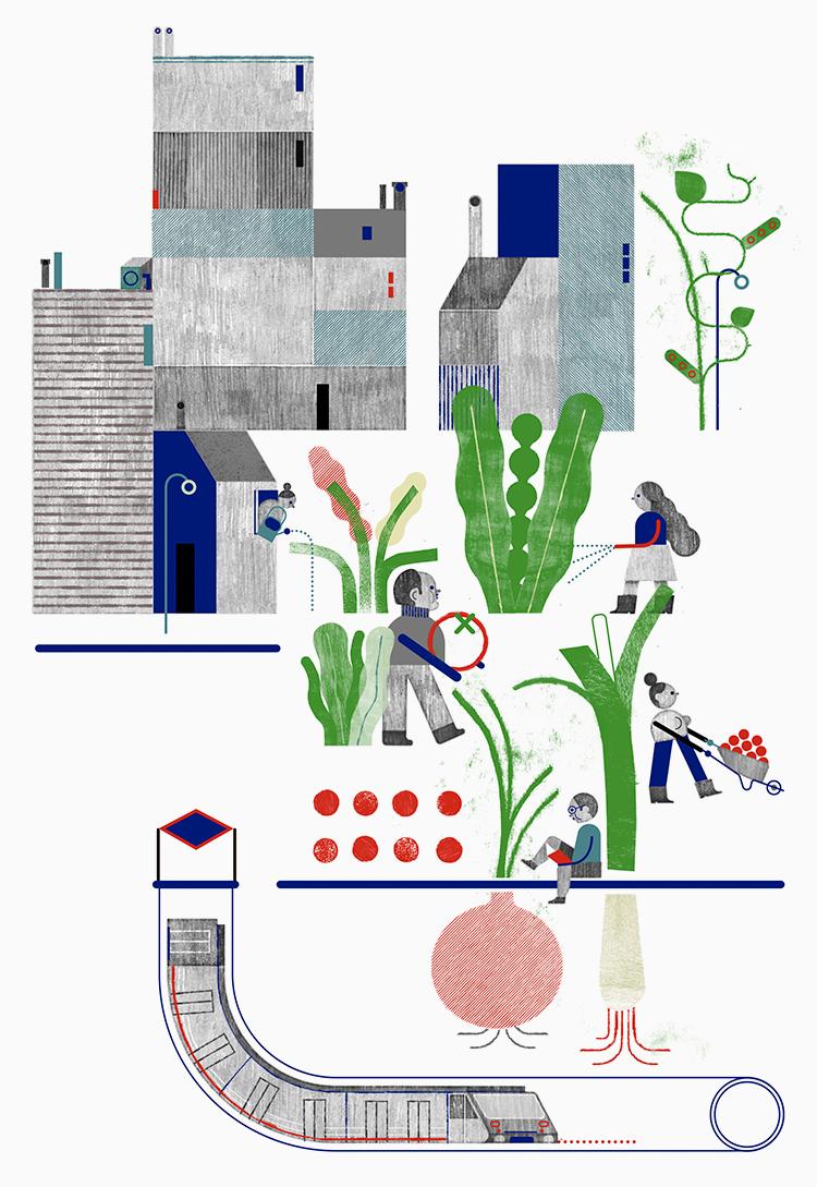 Ana Bustelo | Huerto Urbano